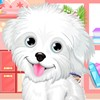 This pet caring game brings you the fluffiest and most adorable puppy to play w