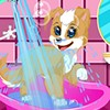 Welcome to the CDE Puppy Spa! Follow the steps to bathe the puppy, dry it off,