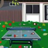 Clean up garden and ping pong at backyard of your house.