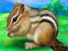 You have just found a young chipmunk, but it needs someone to take care of him.