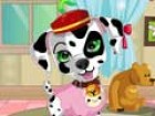 Dress up this little Dalmatian puppy. Choose all the clothes and accessories fo