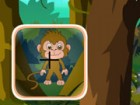 Find all the monkey's that are hiding in the forest. They might be swinging fro