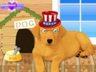 Labrador puppy is a friendly dog. Match fur color and accessories for your love
