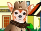Chihuahua is a tiny and cute dog pet. You get to choose your favorite clothes a