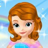 Princess Sofia have her wedding today. You are her personal wedding organizer a