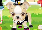 Make these little adorable puppies look cute and your clients will surely be sa