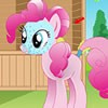Rosie have a cute Pony, she is more interest to take care of her pony. Every ev