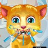 Talking Ginger, the cute cat, is here in this kitty dentist game and you will b